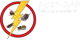 Pest Control Contractor